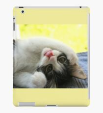 Silly Kitten iPad Case/Skin