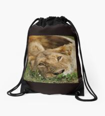 dreamy lioness Drawstring Bag