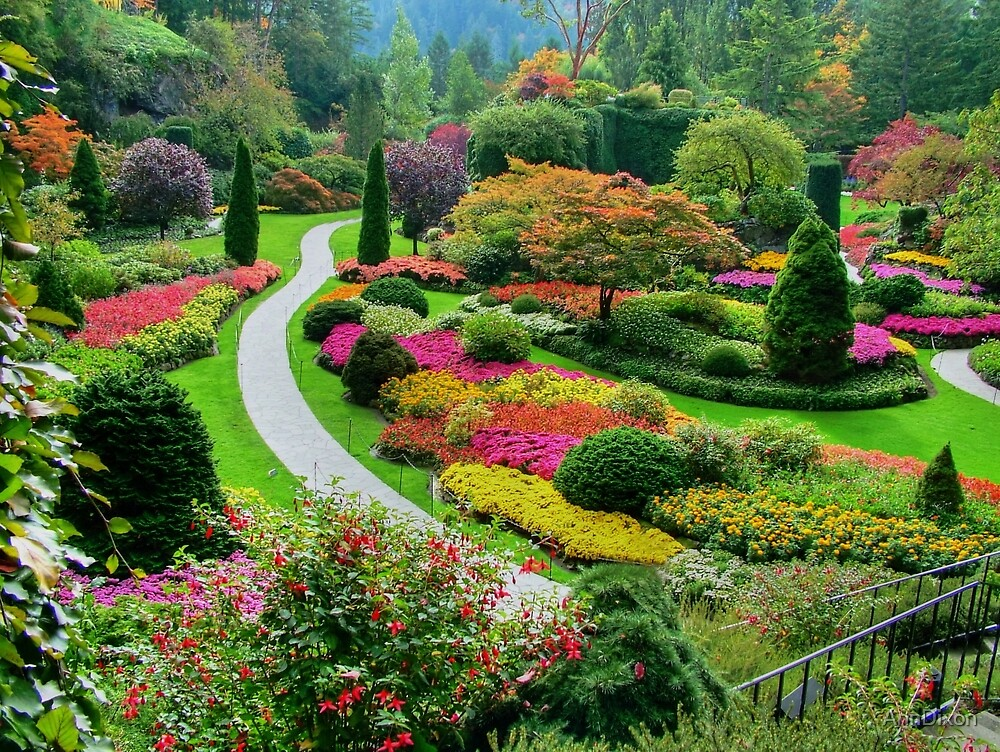 Butchart gardens victoria canada in autumn by for Landscape design canada