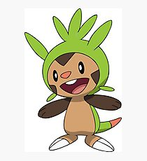 Chespin Normal Photographic Print