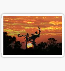 BALD EAGLES AND SUNSET Sticker