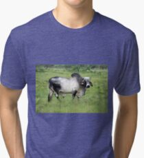 BRAHMAN BULL Tri-blend T-Shirt