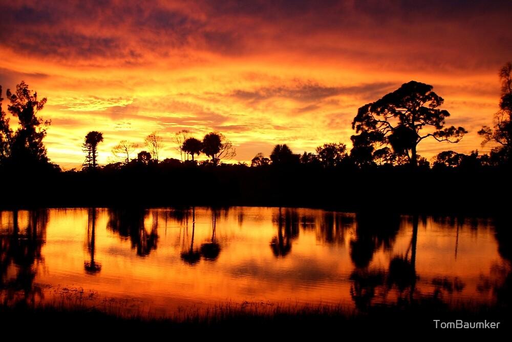 FLA SUNSET by TomBaumker