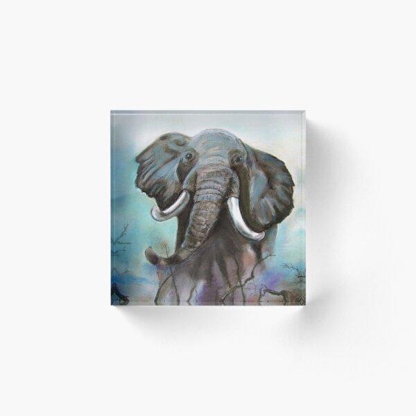 Elefante Bloque acrílico
