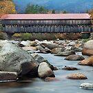 Maine Bridge by Angela Tice Gunn