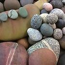 Rock Garden 2 by phillipcmiller
