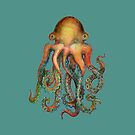 «Pulpo o calamar? Es un cefalópodo!» de dotsofpaint