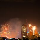 New Year Fireworks (Brisbane City) 31/12/2015 by W E NIXON  PHOTOGRAPHY