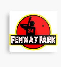Fenway Park Metal Print
