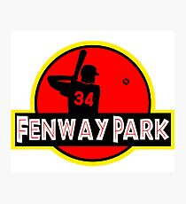 Fenway Park Photographic Print