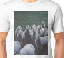 Sheep gang landscape animal photography Unisex T-Shirt