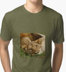 dreamy lioness Tri-blend T-Shirt