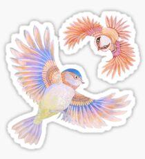 Birds of Paradise Sticker