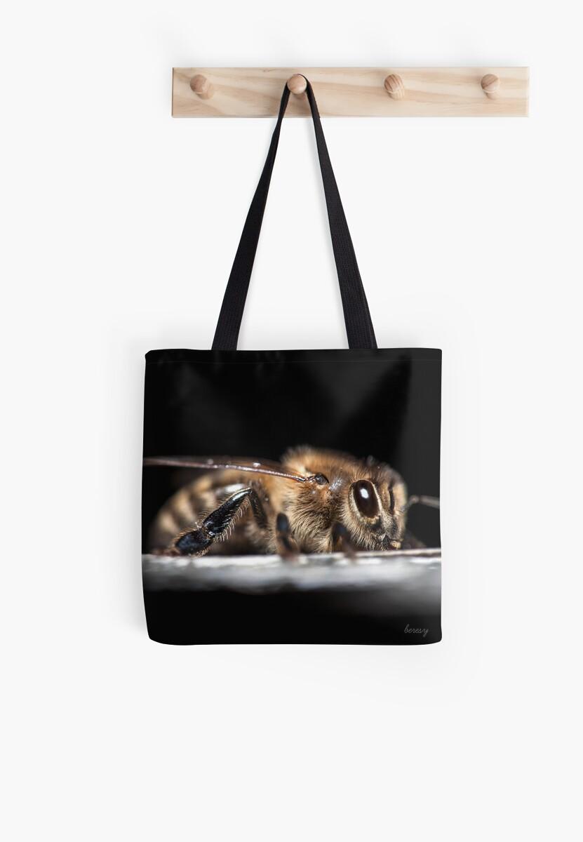 Honey Bee by beresy