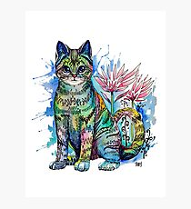 Watercolor cat rainbow colors Photographic Print