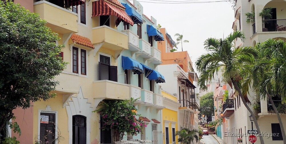 Old San Juan  by Elizabeth Rodriguez
