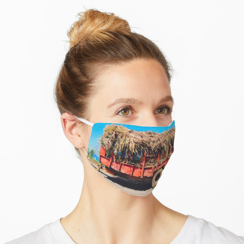 Masque «LA REUNION»
