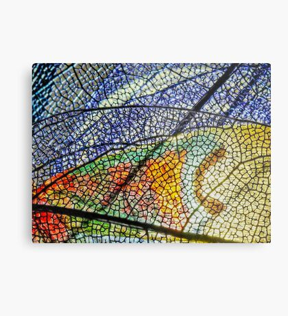 In Mother Nature's Cathedral Metal Print