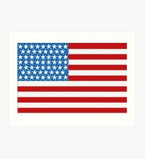 Stars & Stripes Art Print