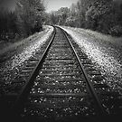 A walk in the woods by tracks..Metal on metal by jammingene