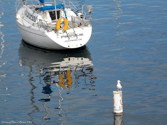 Sea Sentinel, Fisherman's Wharf Monterey by Marielle Valenzuela