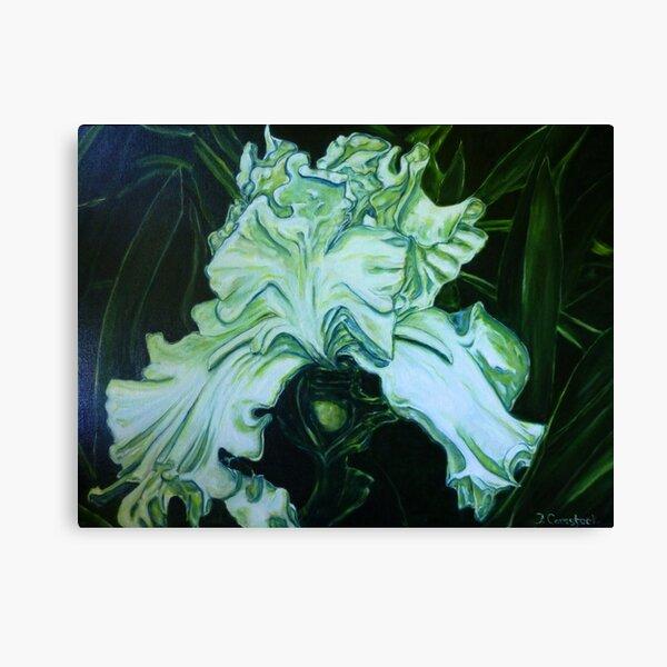One White Iris Canvas Print
