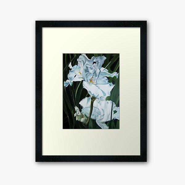 White Irises Framed Art Print
