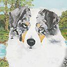 """Rowdy"" Australian Shepherd Dog Portrait by Barbara Applegate"