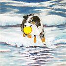 Australian Shepherd Frisbee Dog in Surf by Barbara Applegate