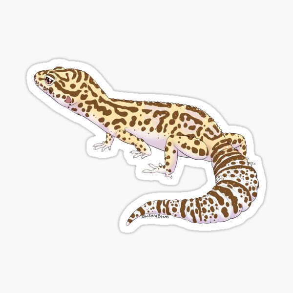 Bell Albino Leopard Gecko Sticker
