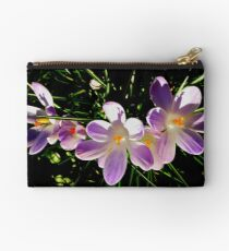 Messengers of spring Studio Pouch