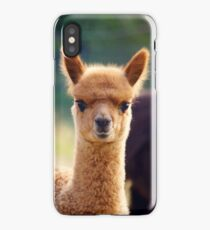 Cute Baby Alpaca iPhone Case