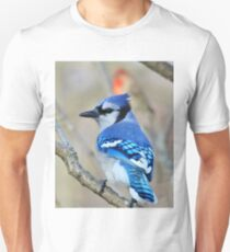 Blue Jay - Exotic Colorful Wild Birds - Natural Beauty T-Shirt
