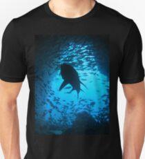 Grey Nurse Shark, South West Rocks, Australia Unisex T-Shirt