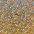 Studland Sunlit Ripples 1 by JessicaMWinder