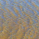 Studland Sunlit Ripples 2 by JessicaMWinder