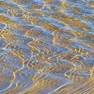 Studland Sunlit Ripples 4 by JessicaMWinder