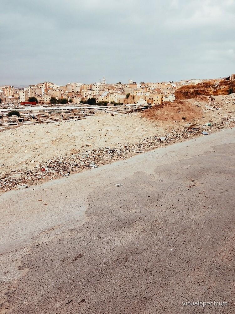 Suburban Neighbourhood in North Africa by visualspectrum