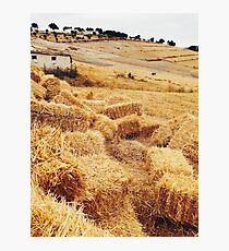 Straw Bales in Beautiful Countryside Photographic Print