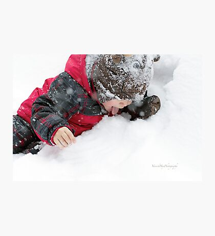 A Taste of Winter Photographic Print