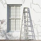 White on white by iamelmana