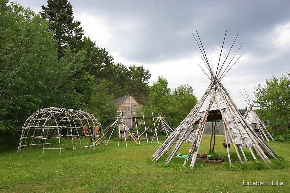Trading Camp by Elizabeth  Lilja