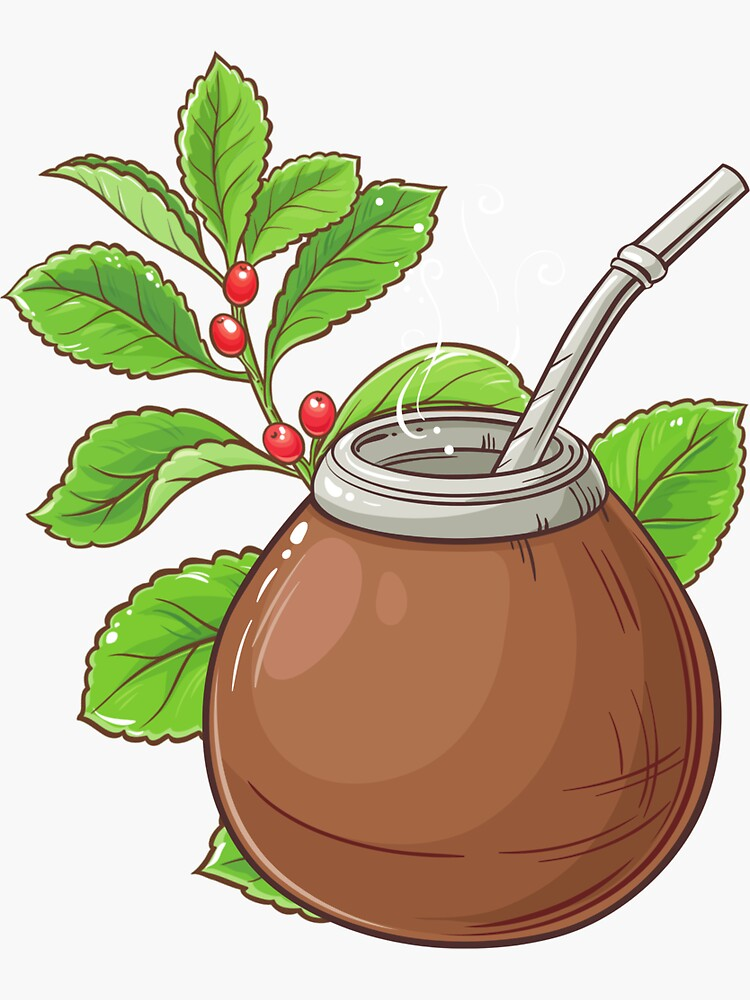 Yerba mate - herbal tea made from the leaves and twigs Ilex paraguariensis plant energy drink by ds-4