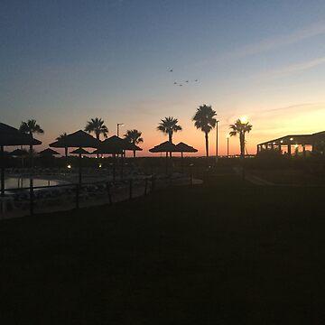 Palm Tree Sunset  by cElsiePics
