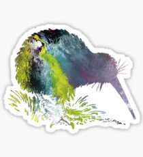 Kiwi Bird Art Sticker