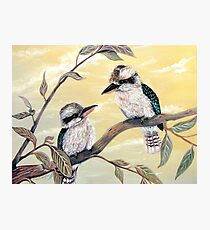 Kookaburra Magic Photographic Print