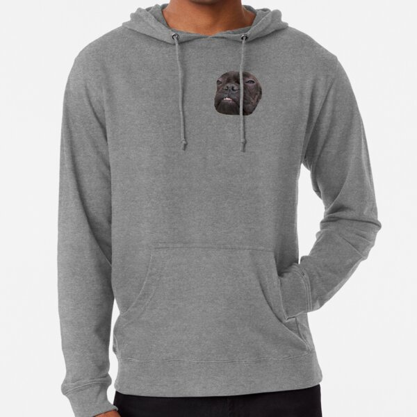 Messed Up Lucius Lightweight Hoodie