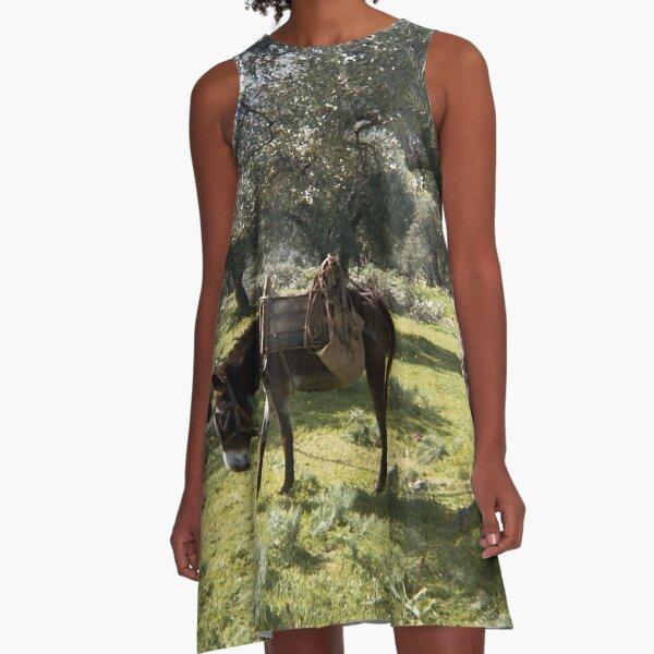 Cretan Donkey A-Line Dress