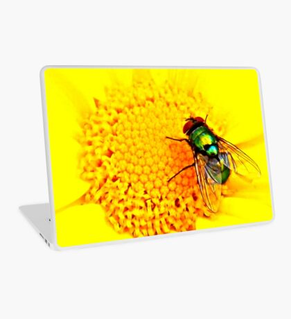 Green Bottle Fly on Yellow Flower Laptop Skin