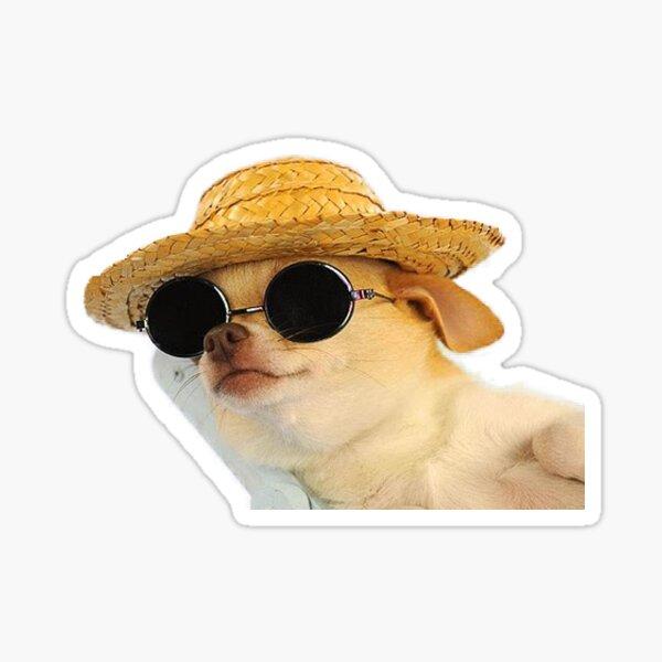 chill dog Sticker